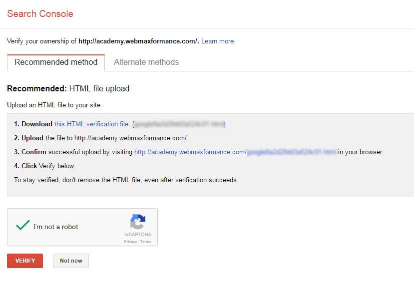 google search console verify propery