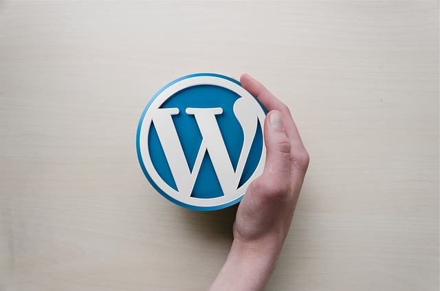 is wordpress good enough for your website needs
