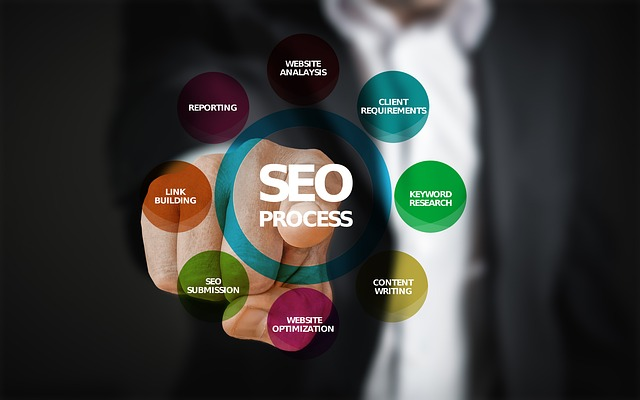 what to look for in a seo expert